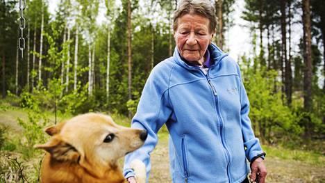 Sanni Mäkelä-Vesa ja suomenpystykorva Viivi käyvät pari kertaa päivässä lenkillä katsomassa, että Sysmän seismisellä havaintoasemalla on kaikki kunnossa.