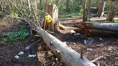 Tammiston luonnonsuojelualueelle on jätetty roskia. Ihmiset ovat löytäneet alueelle varsinkin viimeisen vuoden aikana.
