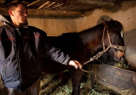 Tämä on inhottavaa ja pahaksi <br />Romanialle, hevostilallisen poika <br />Alin Dinu miettii Eurooppaa <br />kuohuttavasta lihaskandaalista.
