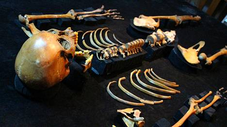 Lähes 13 000 vuotta veden alla säilynyt luuranko saa tutkijoilta nimekseen Naia.