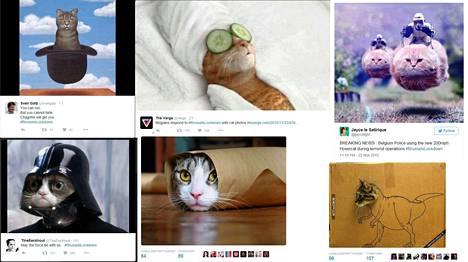 Kuvat ovat ruutukaappauksia twitter-tileiltä.