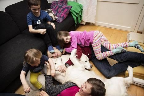 Lattialla koirien kanssa makoileva pariskunta Minna ja Ville Viikari asuu Tapanilassa 2-vuotiaan Niklaksen (vas.) kanssa. 8-vuotias Ronja ja sohvalla istuva 9-vuotias Veeti asuvat tässä toisessa kodissaan vuoroviikoin.