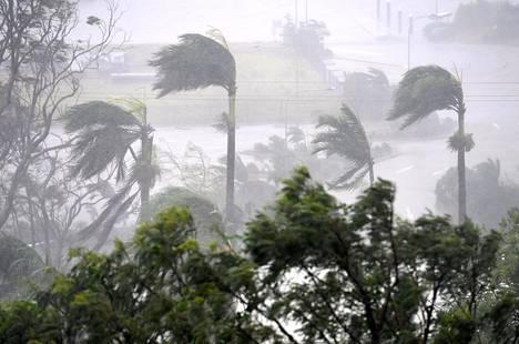 Voimakas myrskytuuli riepotteli puita Airlie Beachillä Townsvillen eteläpuolella tiistaina.