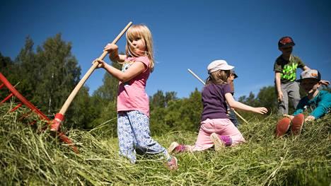 Pähkinärinteen päiväkodin lapset Anna Kangas (vas.), Emilia Loukko, Tiago, Niclas Halttunen ja Sebastien ovat jo kokeneita niittytalkoolaisia.
