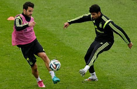 Ensi kaudeksi Chelseaan siirtyvä Cesc Fabregas pallotteli Espanjan harjoituksissa Diego Costan kanssa. Myös Costan odotetaan siirtyvän lontoolaisseuraan.