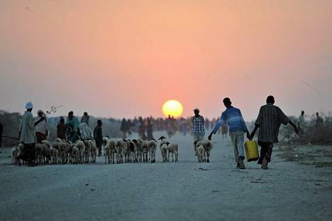 Somalialaiset pojat kantoivat vettä lähellä Jowharin pakolaisleiriä Somaliassa. Klaanien väliset taistelut ovat pakottaneet yli 12000 ihmistä pakenemaan kodeistaan lähelle Jowharin kaupunkia.