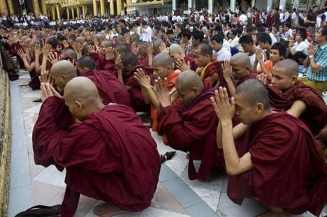 Rakhinemunkit rukoilivat buddhalaisten ja muslimien välisissä väkivaltaisuuksissa kuolleiden puolesta Yangonissa kesäkuussa 2012.