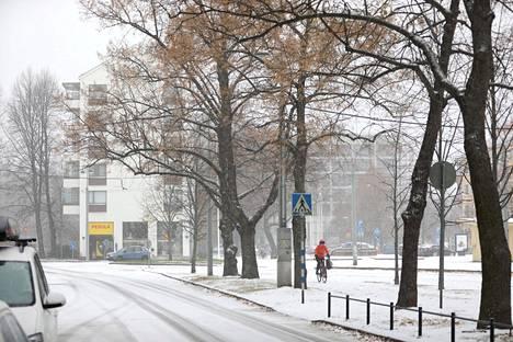 Luminen Munkkiniemi marraskuussa 2016.