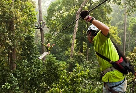 Kuva on otettu Jungle Flight -yrityksen vaijeriliukuradalla Thaimaan Chiang Maissa vuonna 2010. Kanadalaisturistin hengen vienyt turma tapahtui Flight of the Gibbon -yrityksen radalla.