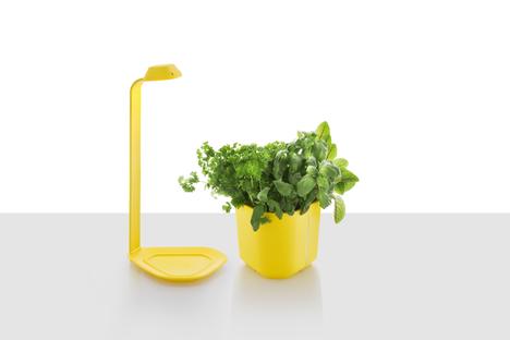 Genie-keittiöpuutarhassa on erillinen valo. Sitä voi käyttää myös muille kasveille.