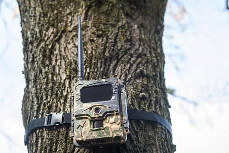 Moni mökkiläinen on hankkinut mökkinsä turvaksi riistakameran.