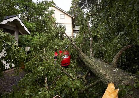 Puu kaatui Helsingin Oulunkylässä.