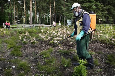 Haagan alppiruusupuistossa myrkytettiin rikkaruohoja kiistellyllä glyfosaalilla kesällä 2011.