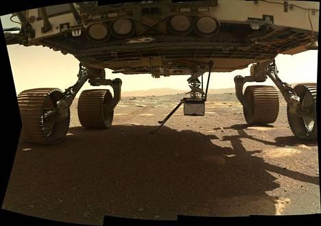 Ingenuity-kopteri asettautuu paikoilleen Mars-mönkijä Perseverancen alle Watson-kameran ottamassa kuvassa. Kopteri on tähän asti ollut kiinnitettynä Perseverancen pohjaan.