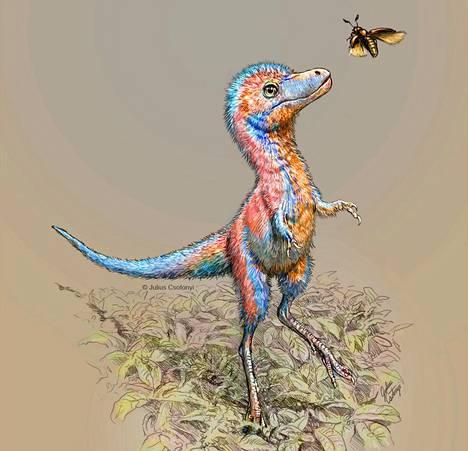 Taiteilijan näkemys liitukauden ajan pohjoisamerikkalaisesta Tyrannosauridae-heimon poikasesta.