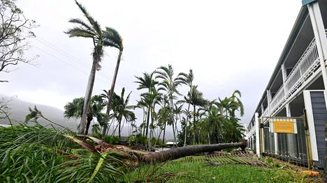 Hirmumyrsky kaatoi puita Townsvillen kaupungissa Australiassa.