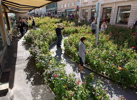 Kaisa Salmen 34 000 ruusupensasta käsittävä taideteos on Pakkahuoneenkadulla ja Kirkkokadulla.