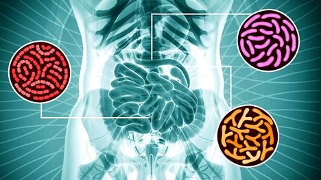 Mikrobiomi on sisäinen ympäristömme.