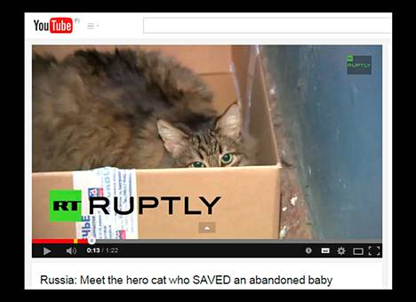 Masha-kissan sankariteosta kertoi venäläinen RT-kanava. Kuva on kaappaus Youtubesta.