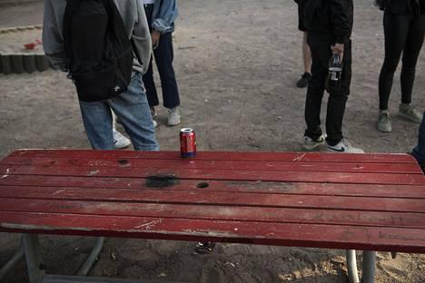 Kyselyn mukaan nuorten yleisimpiä kiellettyjä tai lainvastaisia tekoja olivat alkoholin humalajuominen, verkkolataaminen ja luvaton poissaolo koulusta.