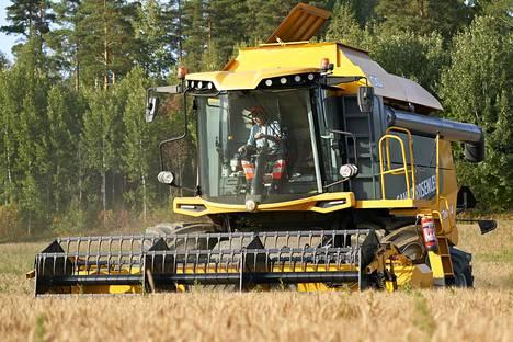 Luomuviljelijä Christian Nyholmin tilalla kärsittiin myös tänä vuonna kovasta kuivuudesta. Keskiviikkona hän pui ohraa.