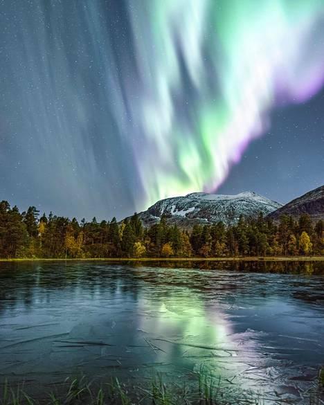 Valokuvaaja ja eräopas Magnus Winbjörk ikuisti hänen mukaansa nimetyt Magnus-revontulet Pohjois-Ruotsin Stora Sjöfalletin kansallispuistossa syyskuun loppupuolella.