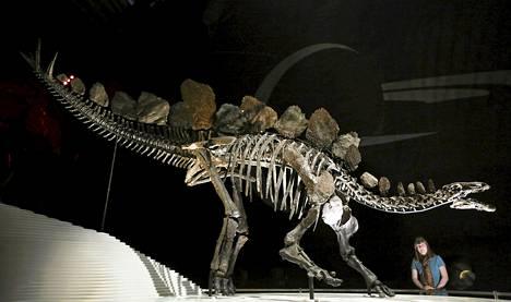 Dinosaurukset välttelivät päiväntasaajaa 30 miljoonaa vuotta.
