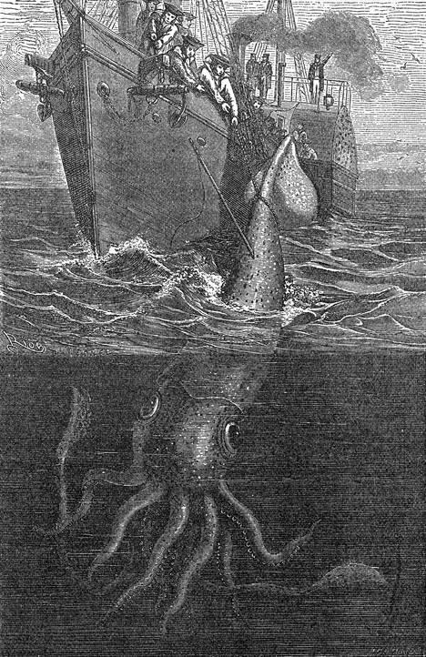 Piirros 1880-luvulta esittää, miten ranskalainen alus pyydystää valtavan kalmarin Kanarian saaren vesillä. Piirros julkaistiin teoksessa Sea Monsters Unmasked, joka painettiin Lontoossa vuonna 1883.