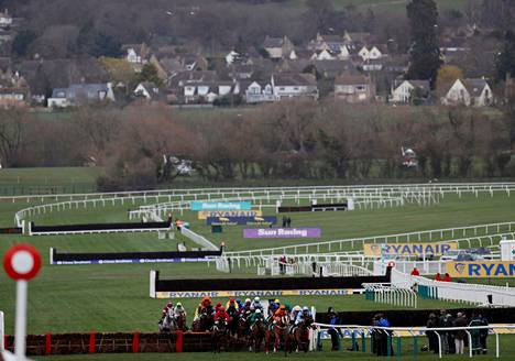 Cheltenhamin ratsastustapahtuma on ollut yleisön suosiossa Britanniassa.