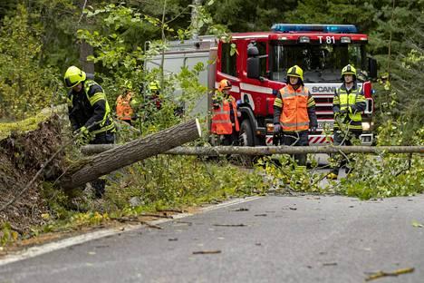 Palomiehet raivasivat kaatunutta puuta Turun Ruissalossa torstaina.