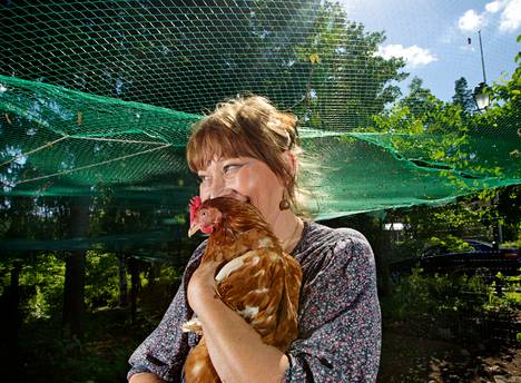 Jos Hannele Virkkusta harmittaa, hän tulee aitaukseen ja ottaa syliinsä kanan. Kanan kanssa voi jutella ja sitä voi rapsuttaa kuin mitä tahansa lemmikkiä.