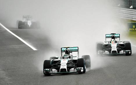 Nico Rosberg ja Lewis Hamilton ovat valloittaneet kärkisijat useimmissa tämän kauden kilpailuissa.