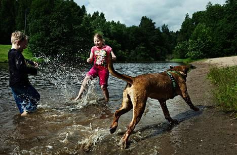 Sofia ja Kasper Leviö sekä Pessi-koira telmivät Päiväkummun uimapaikalla. Koira pääsee veteen, kun rannalla ei ole muita.
