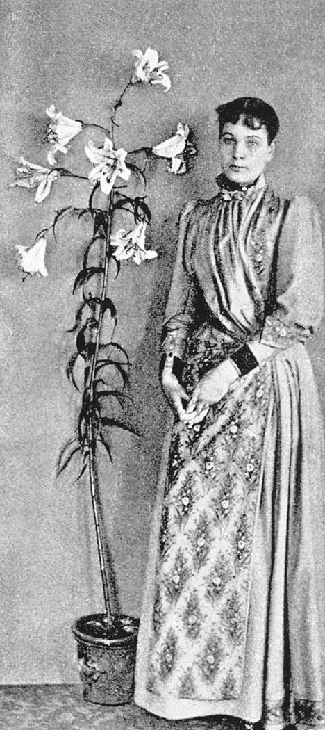 Madame d'Espèrance (oik. Elizabeth Reed, 1848–1919) ja tuonpuoleisesta ilmestyneeksi väitetty lilja. – Kirjan kuvitusta.