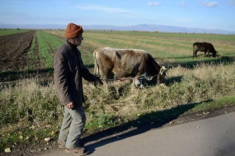 Romanialaisviljelijät kokevat joutuneensa alakynteen ulkomaisten sijoittajien vallatessa peltoja.
