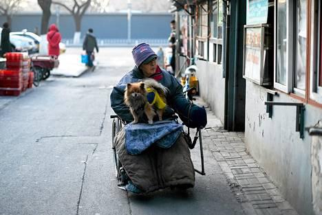 Ikääntynyt mies liikkui sähkökäyttöisellä pyörätuolilla koira sylissään Pekingissä maanantaina. Ennusteiden mukaan 350 miljoonaa kiinalaista on yli 60-vuotiaita vuonna 2030, eli kaksinkertaisesti nykyhetkeen verrattuna.
