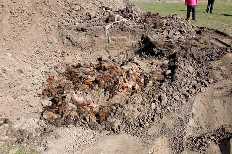 Poliisi suoritti kaivauksia tilalla keväällä 2015.