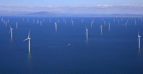 Britannia on Saksan ohella maailman johtava merituulivoiman käyttäjä. Kuvassa Walneyn merituulipuisto Blackpoolin edustalla.