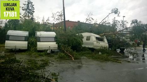 Alppikylässä Jakomäessä puita kaatui tielle.