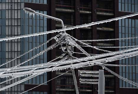 The power line was covered with an ice sheet in Vladivostok, Russia.