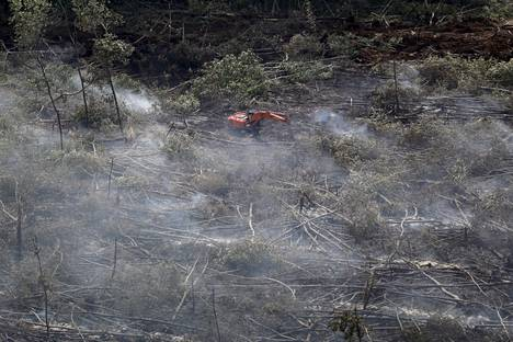 The aerial view shows traces of a forest fire on the island of Sumatra in Indonesia.  When burned, large amounts of carbon dioxide are released from forests.  As they grow, forests sequester carbon from the air and help combat climate change.