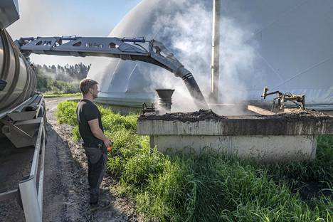 Biokaasuvoimalasta lanta siirretään pelloille mädätyksen jälkeen. Autonkuljettaja Robin Eriksson vie lannoitekuorman 35 kilometrin päähän Purmoon.