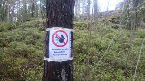 Puuhun kiinnitetty lappu yrittää pitää rakentajat loitolla metsästä. Kuva on lukijan ottama.