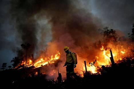 Metsäpalo riehui Amazonasin osavaltiossa Brasilian luoteisosassa elokuussa 2020.