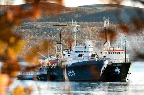 Greenpeacen Arctic Sunrise -alus kiinnitettynä venäläiseen rannikkovartioston alukseen Murmanskissa 1. lokakuuta.