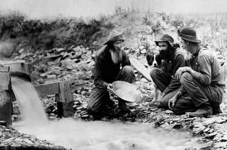 Kullanhuuhdontaa Alaskassa vuonna 1952.
