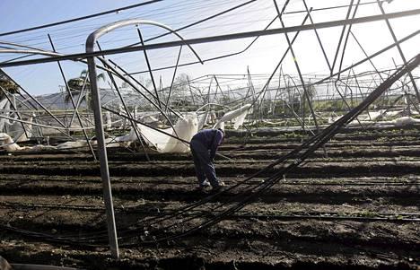 Työntekijä tarkasti Sandy-myrskyn aiheuttamia vahinkoja Santiago de Cubassa viime lauantaina.