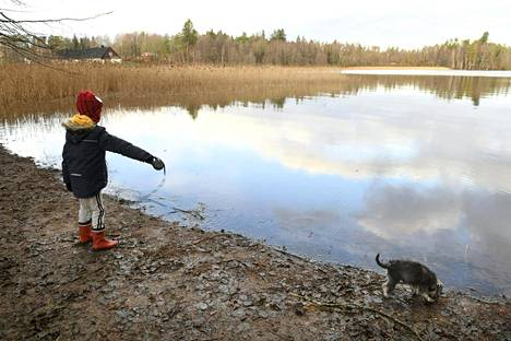 With climate change, the lake waters of the south are likely to freeze for an increasingly shorter period of time.  Pictured is a child and a dog on the shores of Lake Bodominjärvi in Espoo on November 22, 2020.