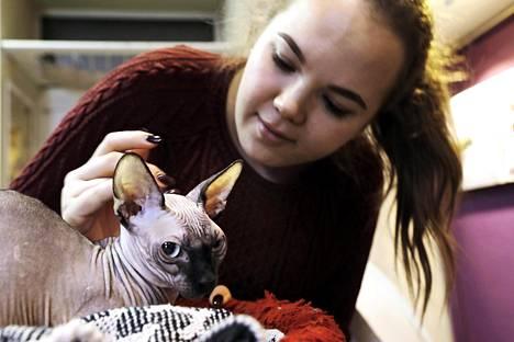 Nastja rapsuttaa Matt-kissaa, jonka rotu on bambino. Matt asuu Pietarin kissatasavallassa.