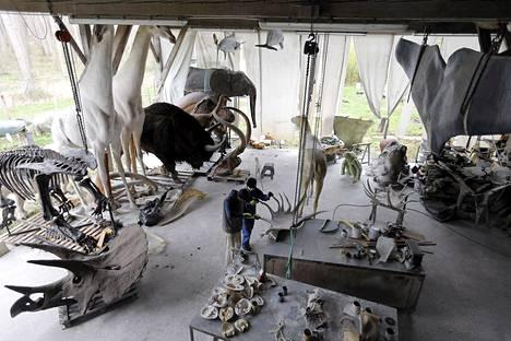 Belgialaisen Emmanuel Janssens Casteelsin  työpaja Prayssasissa  on erikoistunut tekemään aidonkokoisia eläin- ja fossiiliveistoksia. Taidonnäytteitä on esillä museoissa ja teemapuistoissa.